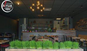 Das Restaurant Mylia in Potsdam