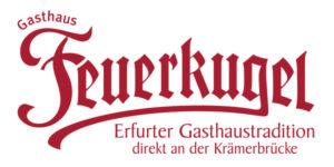 feuerkugel logo schema org 300x150